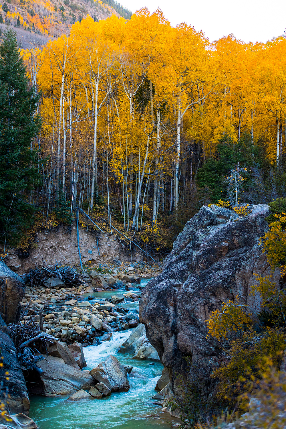 A stream surrounded by rocks and trees with orange leaves | Motif