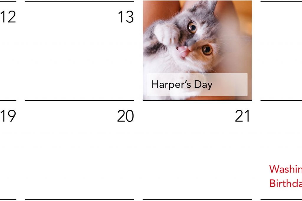A custom photo calendar with a picture of a cat on their birthday | Motif