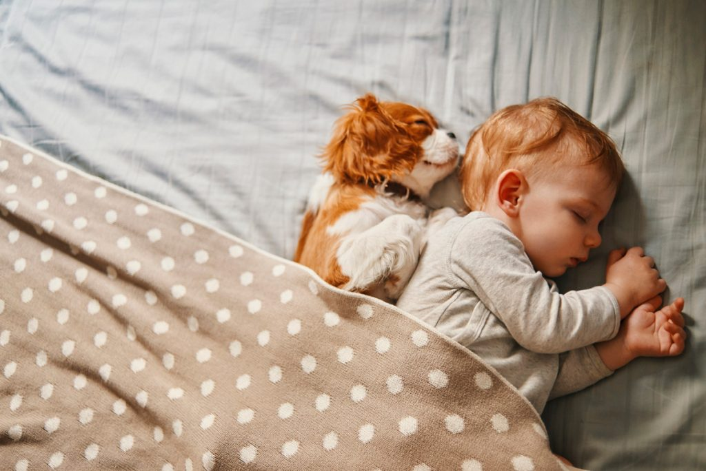 A baby sleeping with a small puppy | Motif