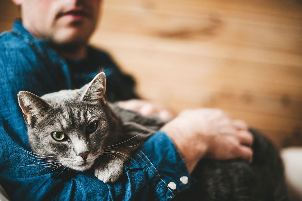 A portrait mode photo of a cat in their owner's arms | Motif