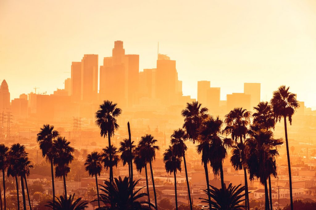 Los Angeles Cityscape at golden hour with palm trees in foreground