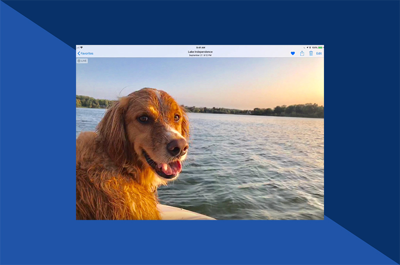 How to Add Text to Photos on iPhone and iPad