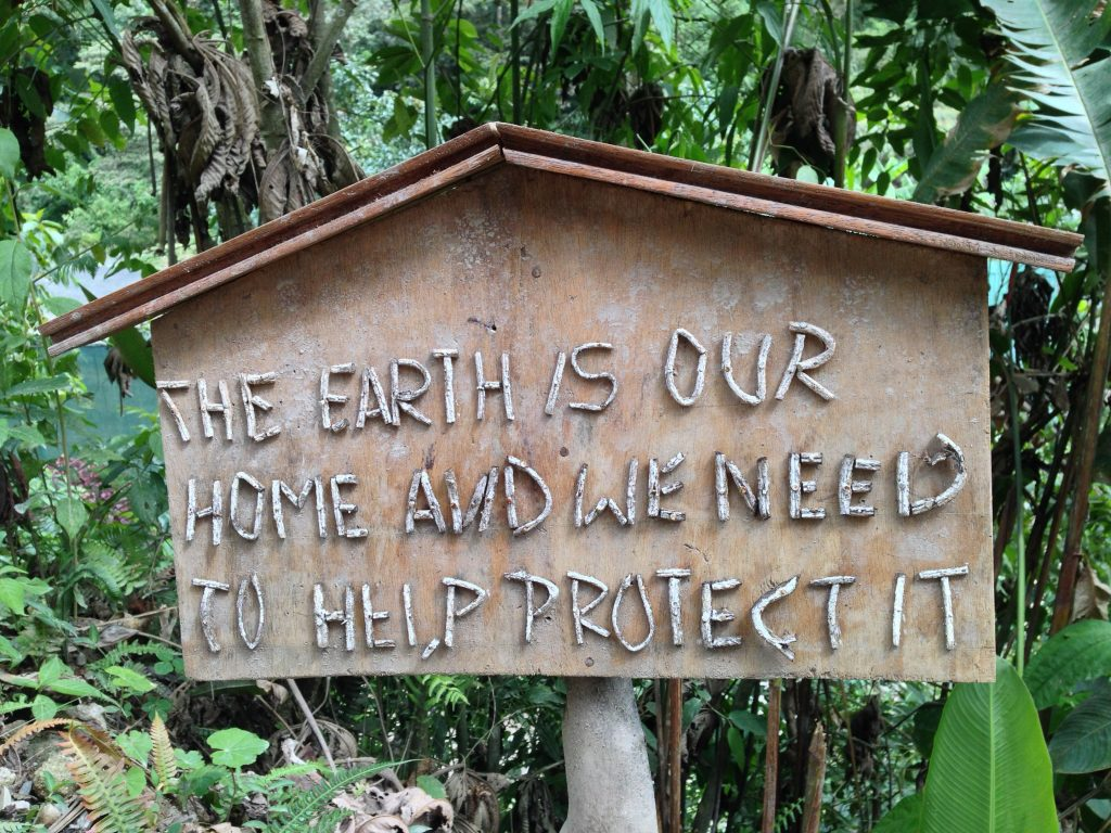 Protecting the Earth and sustainability is a key driver of our company practices.