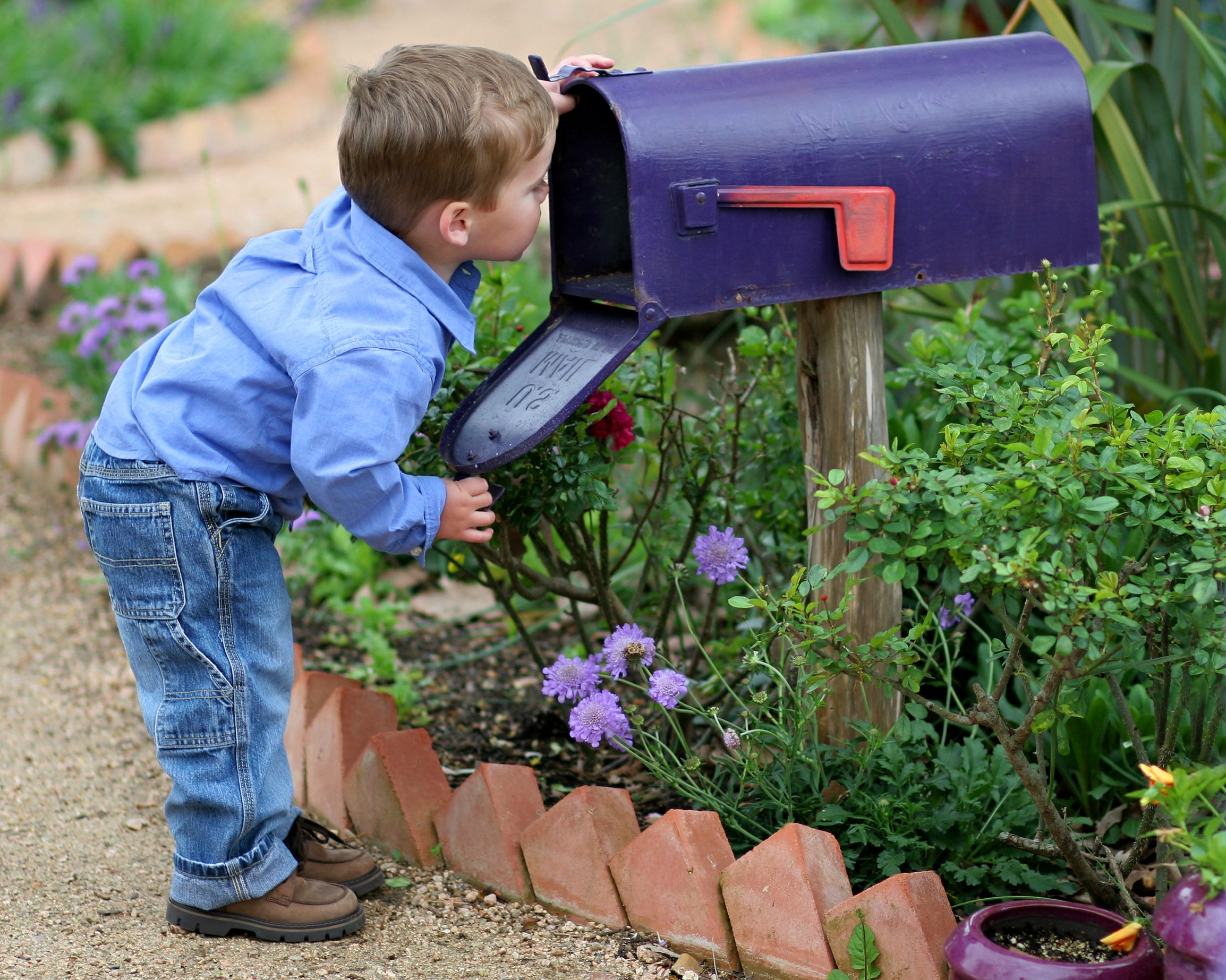 Little boy looks inside blue mailbox for a thinking of you card.