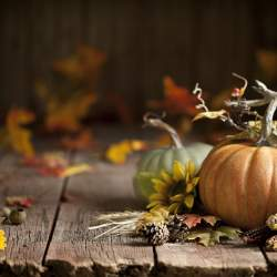 Autumn Pumpkin Background on Wood