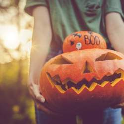 Woman's hands holding a small gourd and a carved pumpkin to take cute Halloween photos.