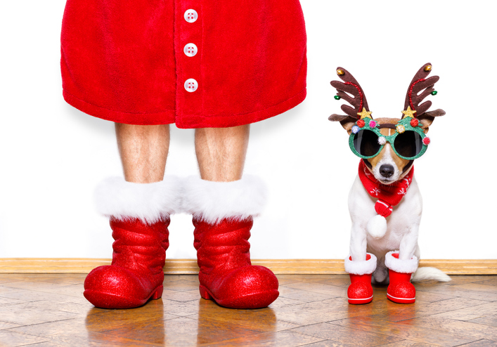 Take funny Christmas picture ideas like this man in Santa boots and robe with dog as a reindeer.