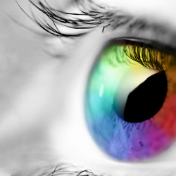 Color and light are always interpreted by the human eye.