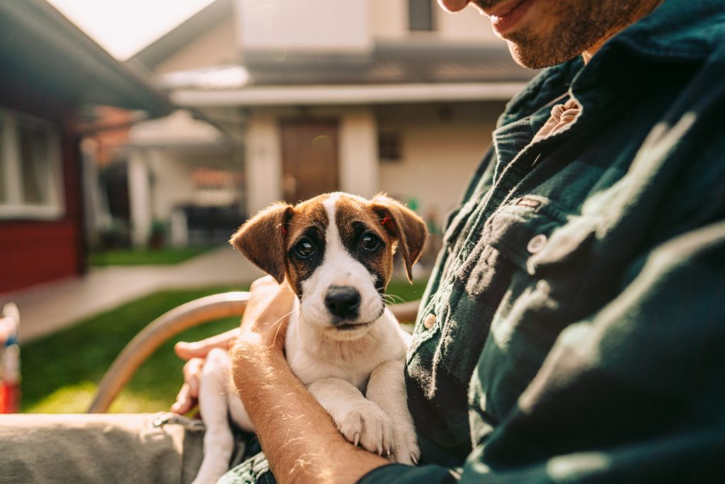 Photo of man and his puppy in a yard
